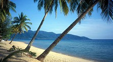 Tioman, where turquoise sea meets golden beach