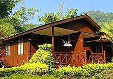 Welcome to Peladang Tioman Chalet