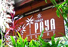 Welcome to beautiful Tioman Paya Resort. Click here to book your idyllic Deluxe Room