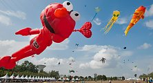 World kite festival